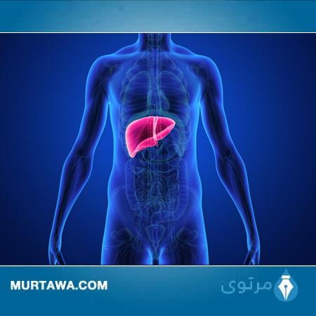 علاقة القدم بأمراض الكبد