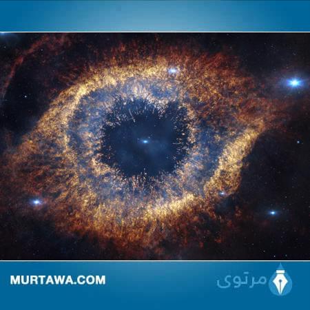 الارادة ام الجاذبية صيرت الكون