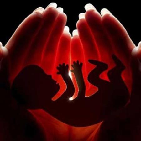 كل أشهر مراحل نمو الجنين